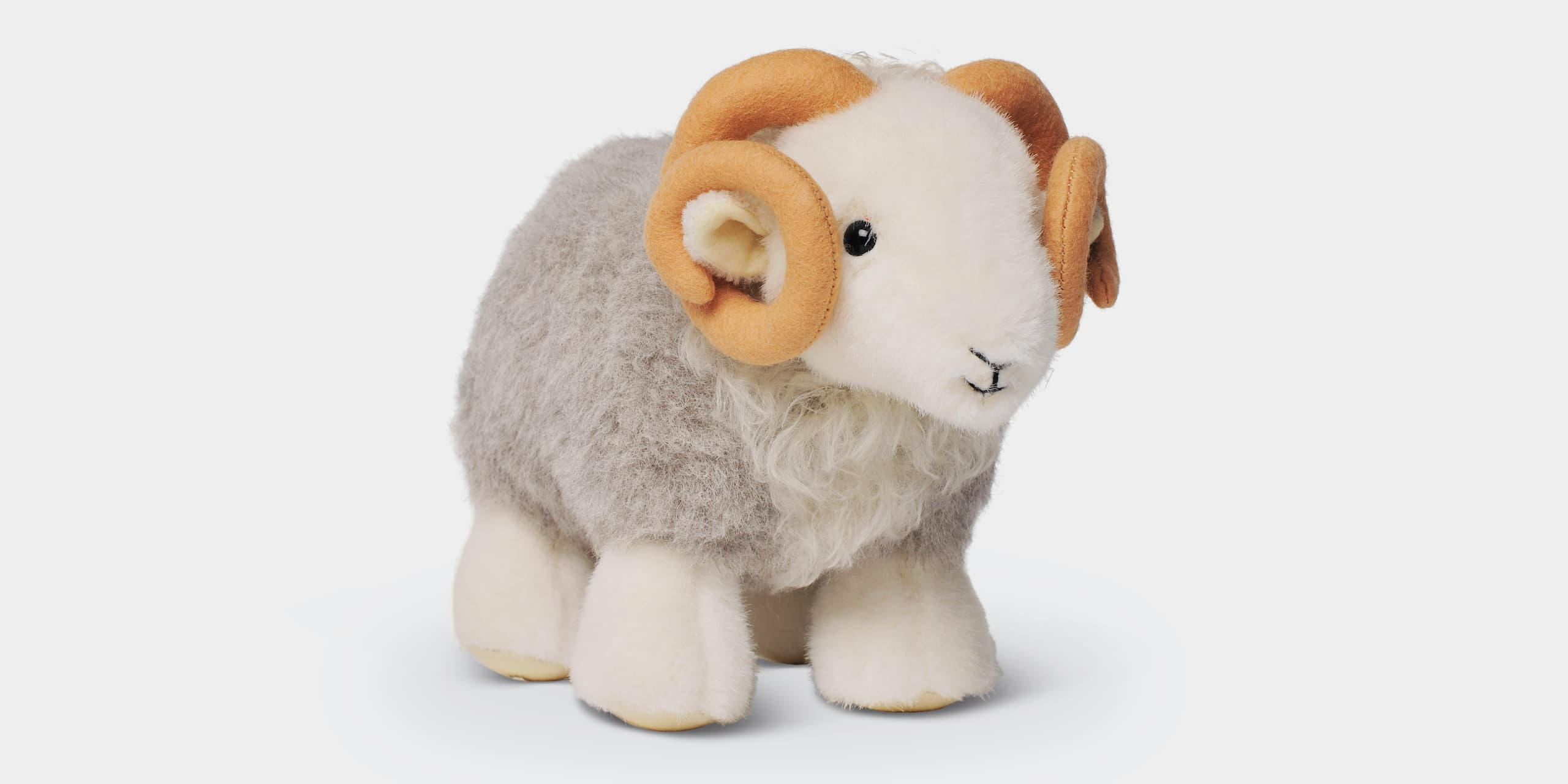 Introducing My Herdy Tup