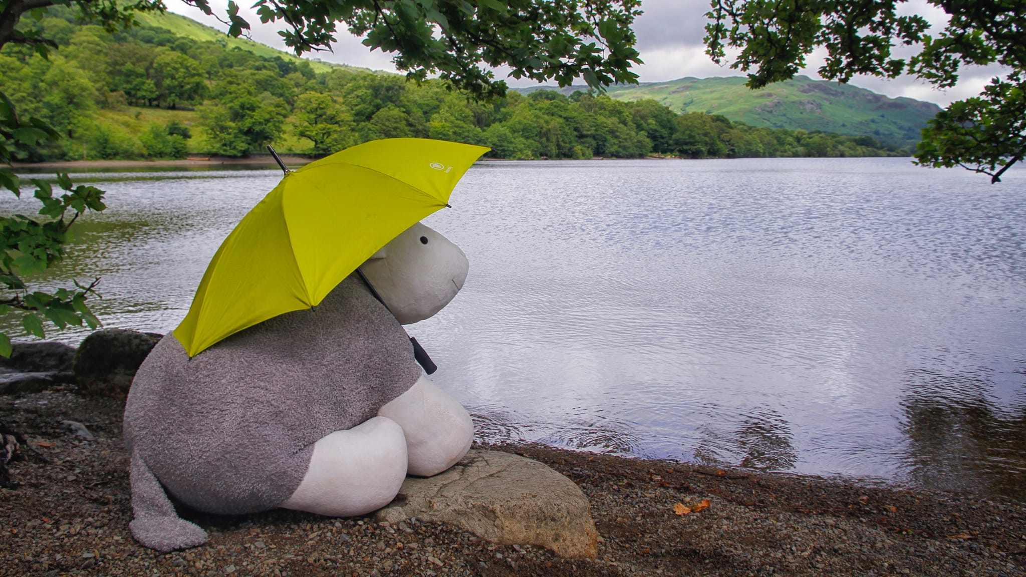 Big Little Herdy At Ullswater