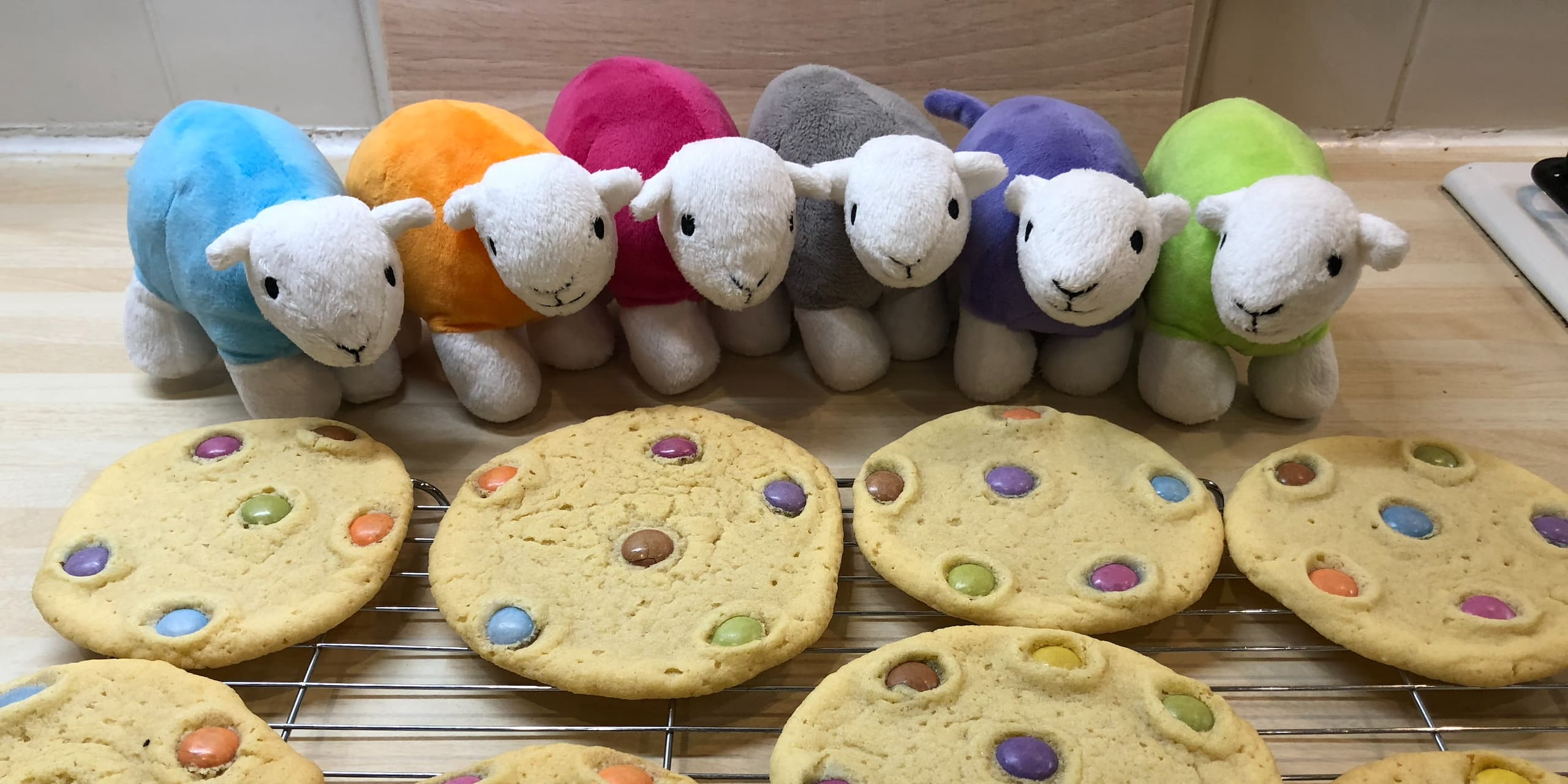 How To Make Smarties Biscuits For Dad