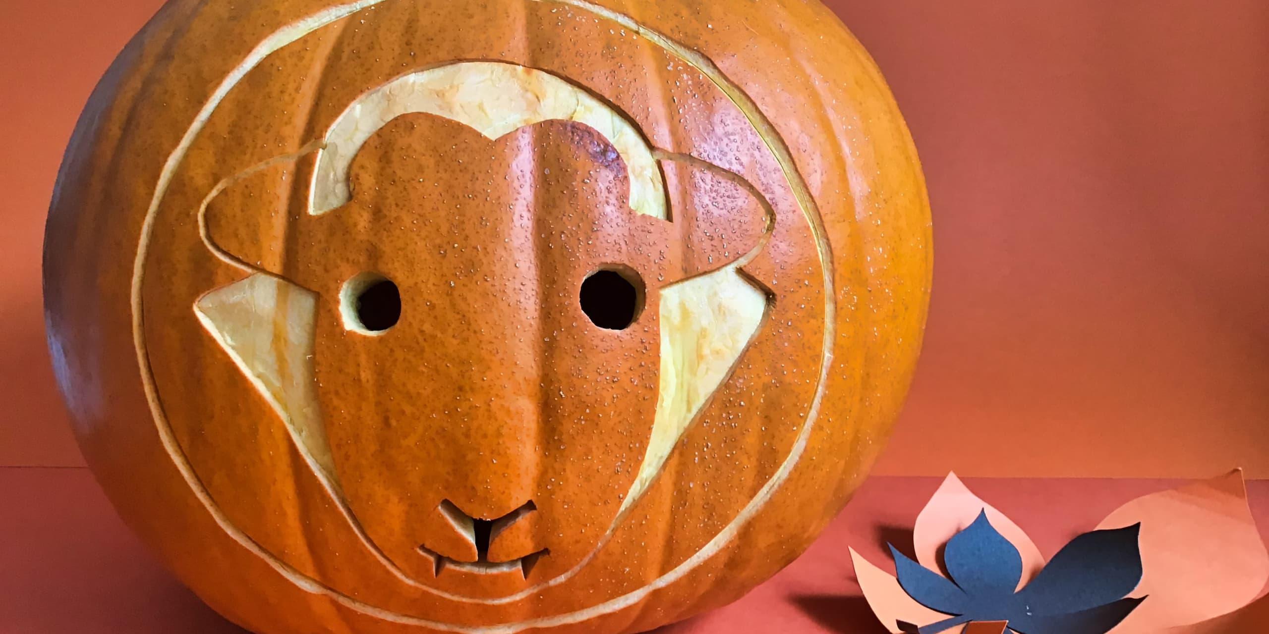 How To Make A Herdy Halloween Pumpkin
