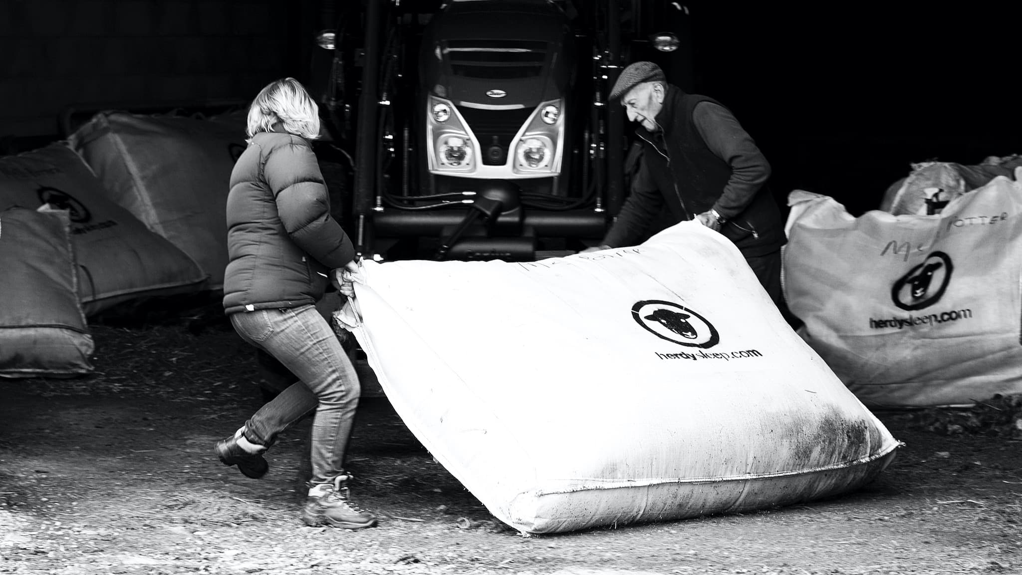 Two Lake District Herdwick farmers carry a heavy woolsack filled with Herdwick wool, ready for collection and use in Herdysleep mattresses. Photo ©Spencer Hannah.