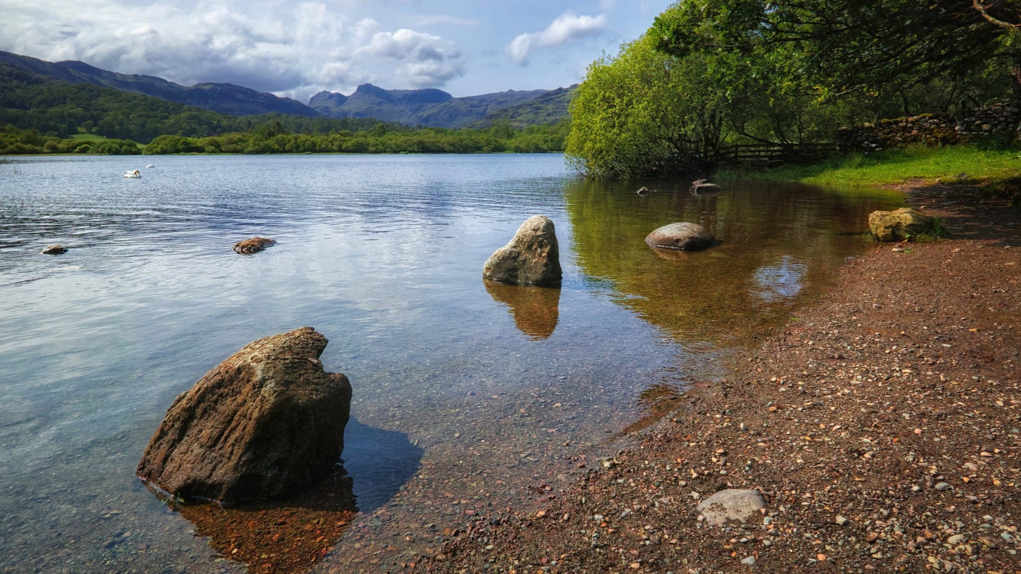 A photograph from the eastern shore of Elter Water looking towards the Langdale Pikes and the surrounding fells. Two nearby rocks poke out of the lake. Shot in the summer.