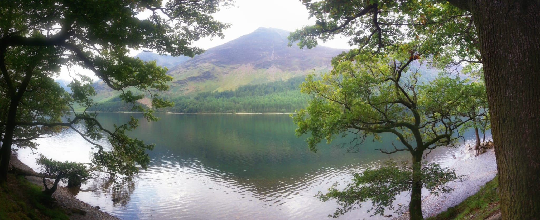 A view towards the High Stile range of fells from the northern shore of Buttermere, framed with trees