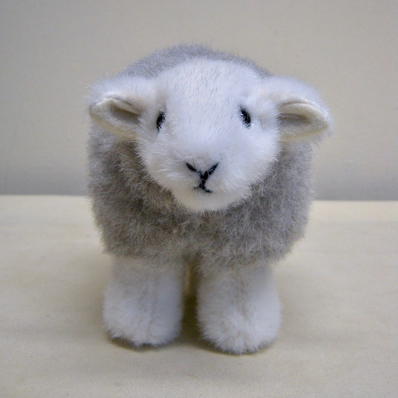 The 1st prototype of My Herdy!