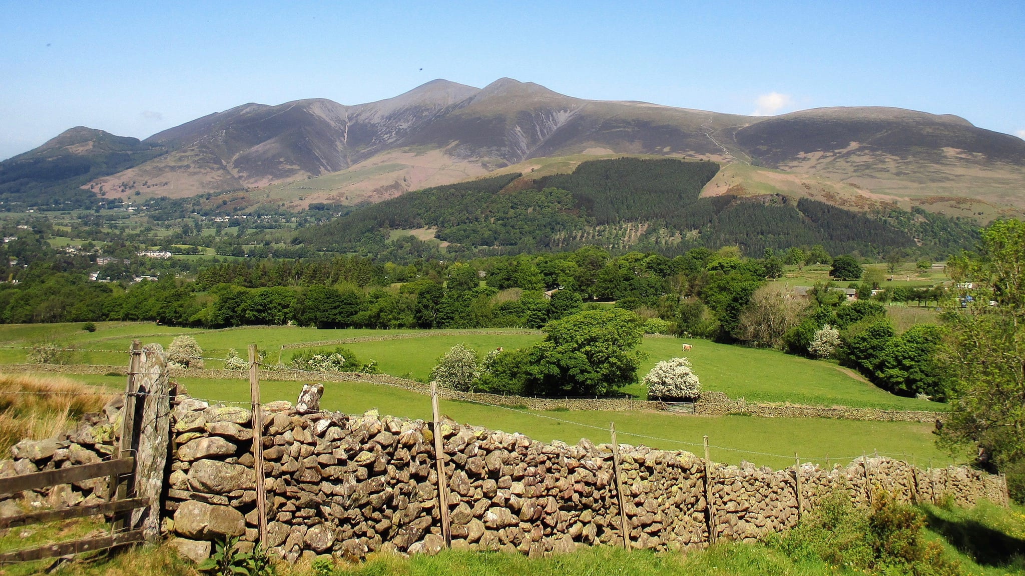 Skiddaw seen from just south of Rakefoot farm, near Keswick. Photo by Antiquary, licensed CC-by-SA-4.0.