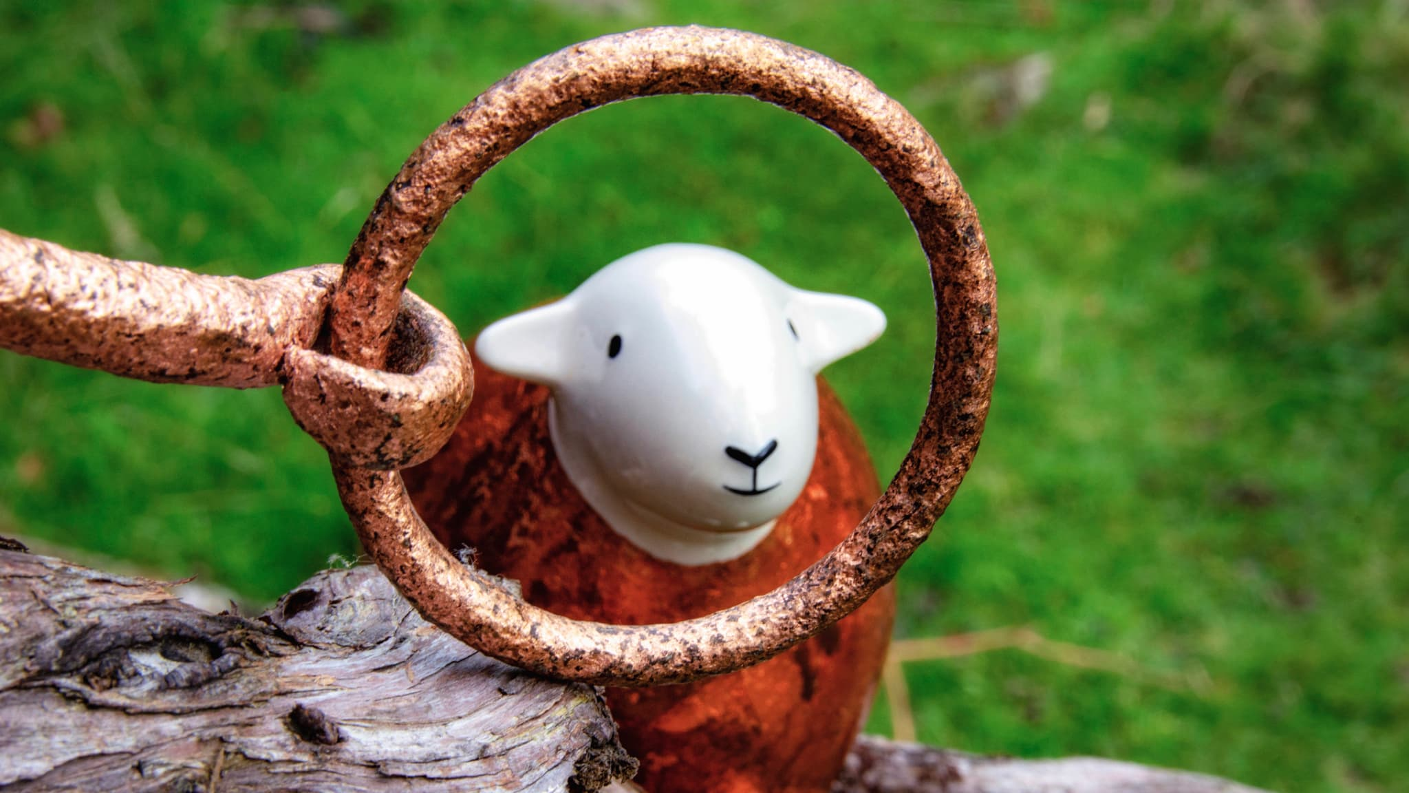 A copper-gilded Herdy looks through a copper-gilded ring
