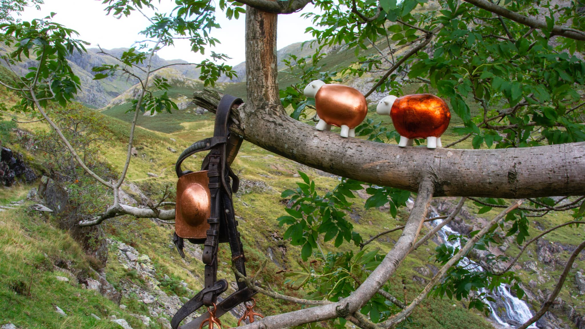 Two copper-gilded Herdy explore the Coppermines trail and landscape above Coniston