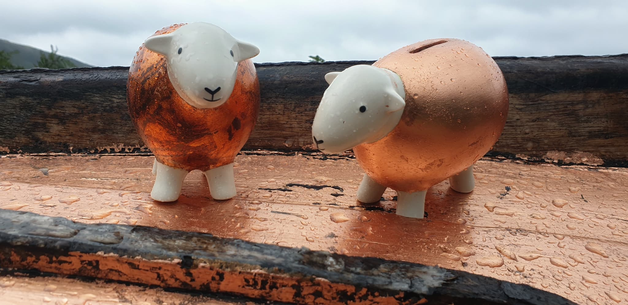 Two Herdybanks, covered in copper