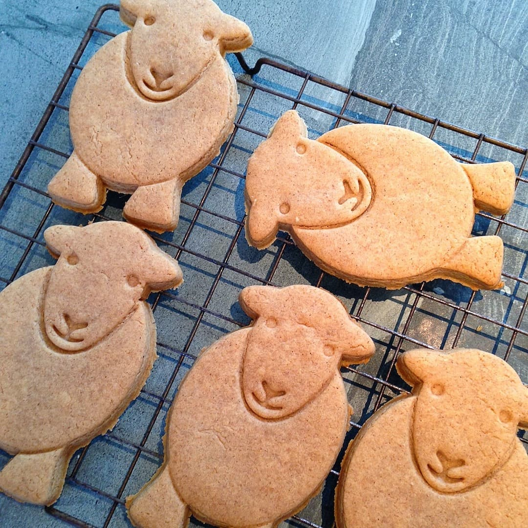 Leave your Herdy Christmas gingerbread to cool