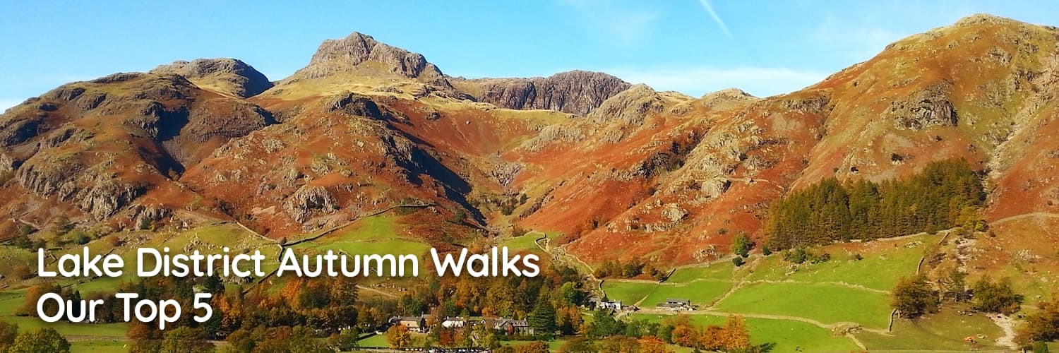 Lake District Autumn Walks: Our Top 5